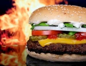 De perfecte burger